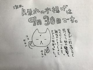 写真 2018-09-26 10 56 00.jpg